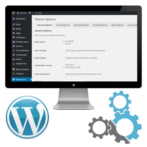 wp-juice-wordpress-theme-setup